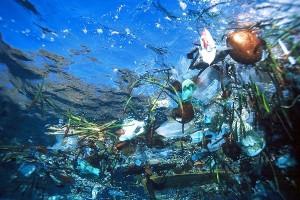 Our Plastic Ocean